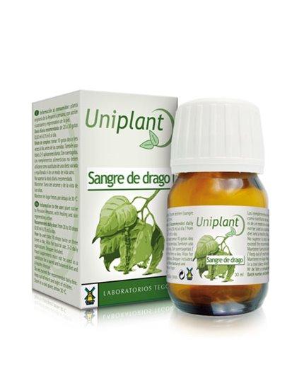 Uniplant Sangre de Drago
