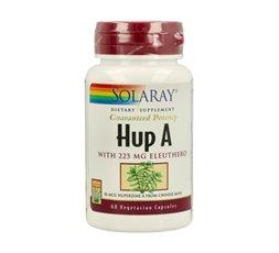 Hup A