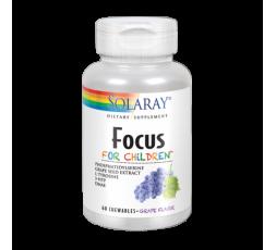 Focus for Children